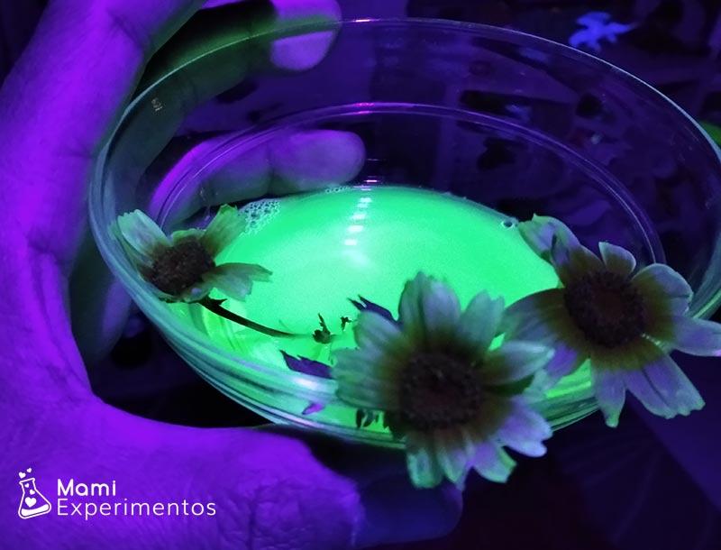 Agua tintada rotulador permanente y margarita sumergida