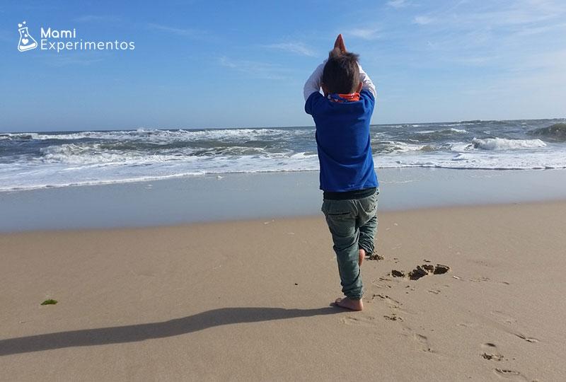 Aprender sobre las olas