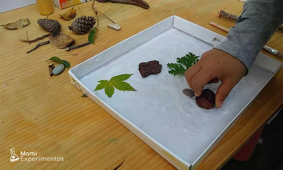 Arte otoñal en tapa de cartón pegando castaña