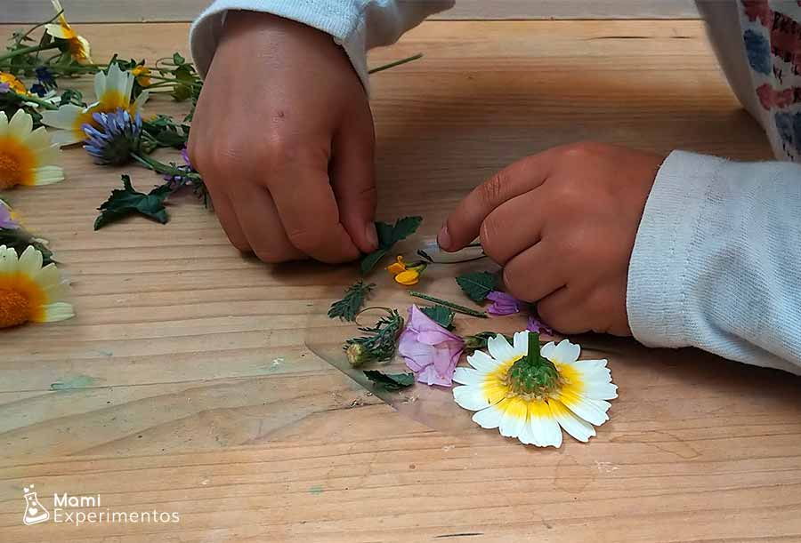 Arte primaveral en atrapasol de flores reales