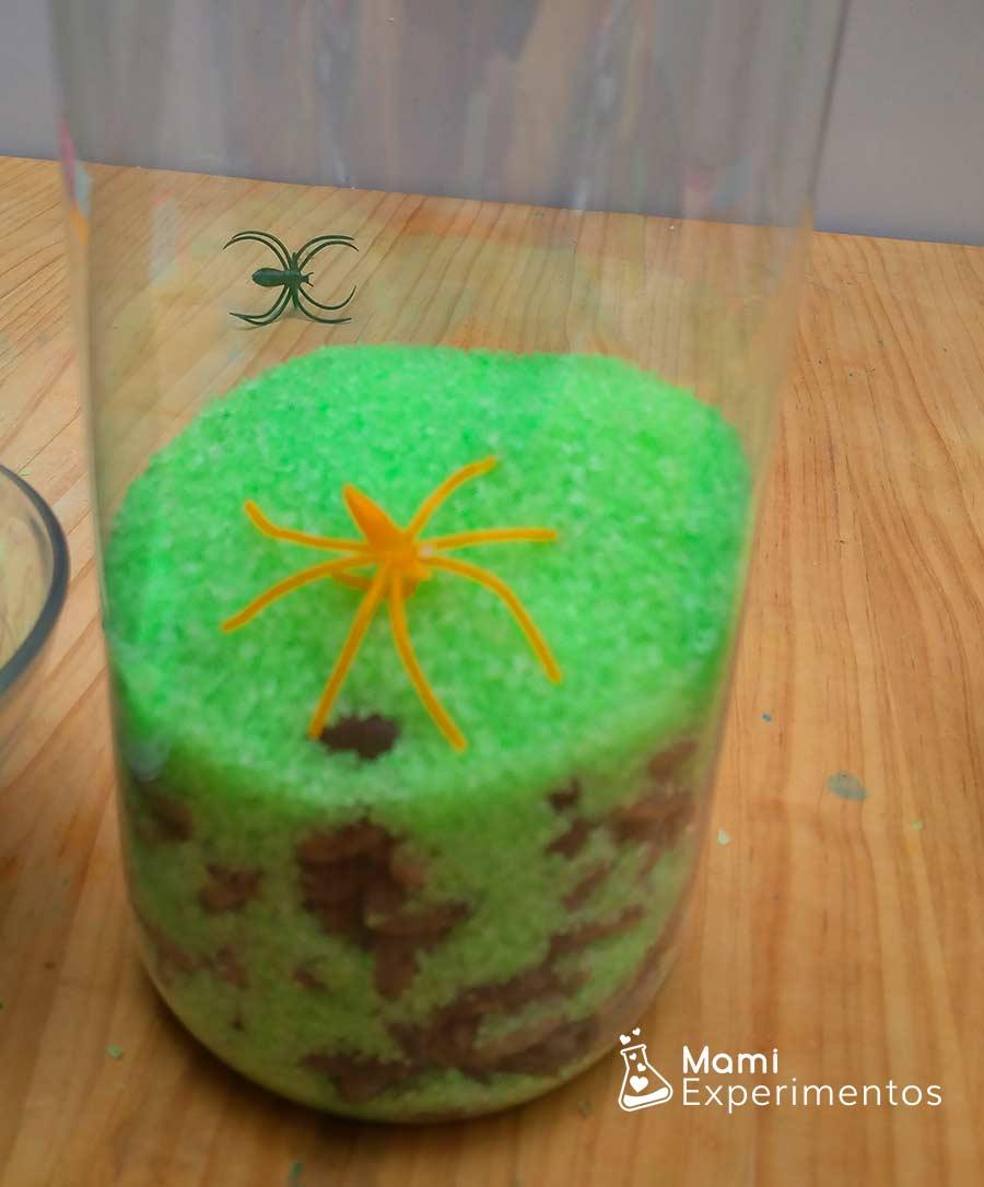 Arañas en botella sensorial halloween con sal teñida