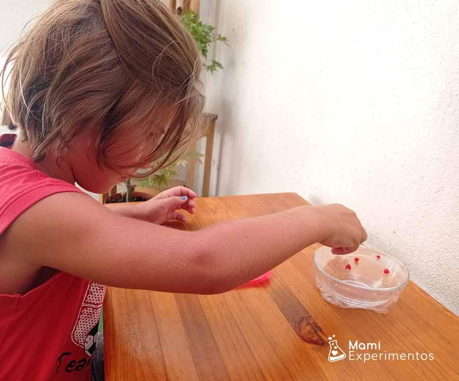 Colocando arroz de colores para experimento vibraciones sonoras