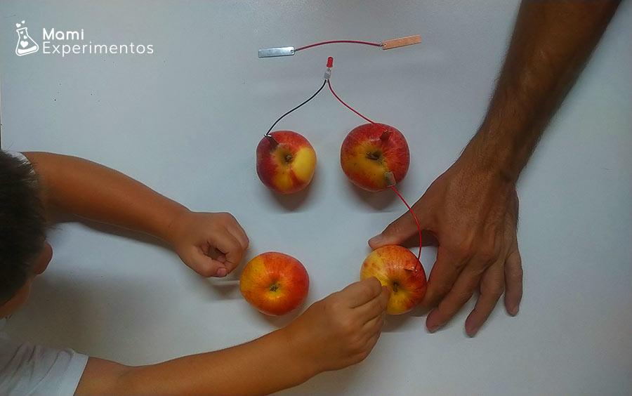 Colocanco placas de cobre y zinc en circuito con manzanas