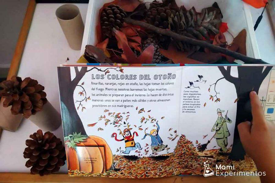 Cuentos de otoño para la caja sensorial