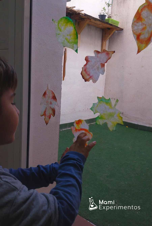 Decorando puerta hacía patio con hojas de otoño de filtros de café