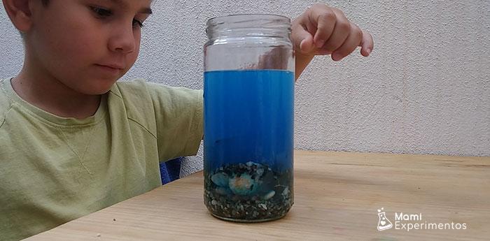 Echando piedras y varios materiales para fondo marino en bote sensorial