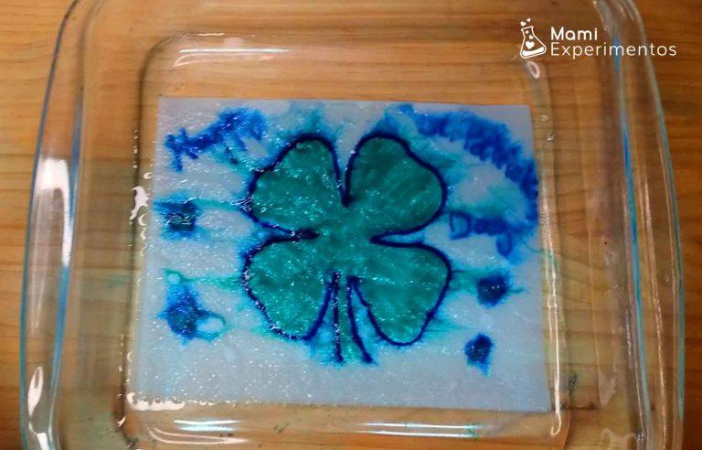 Experimento trebol mágico en papel de cocina especial san Patrick day