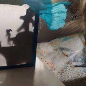 Experimento sobre sombras creando teatro de sombras por el día del libro