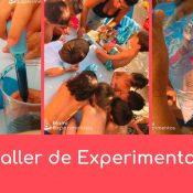 Fin de verano: taller de experimentos