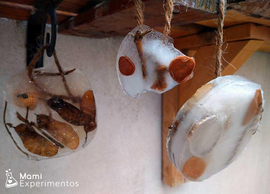 Hacer adornos navideños con agua y materias naturales