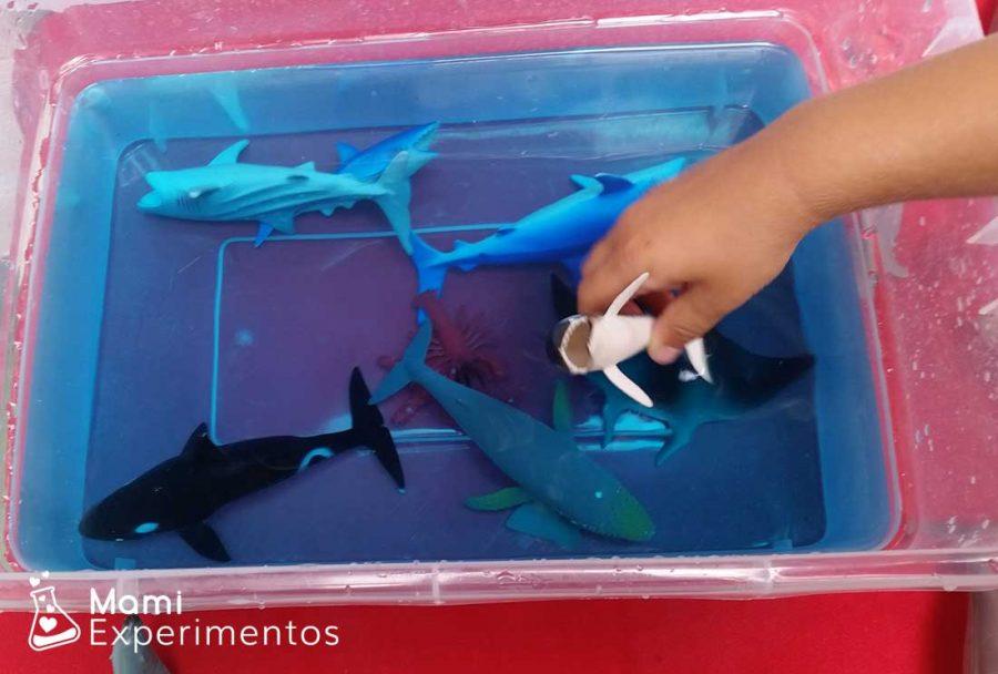 Jugando aprendo con los animales marinos