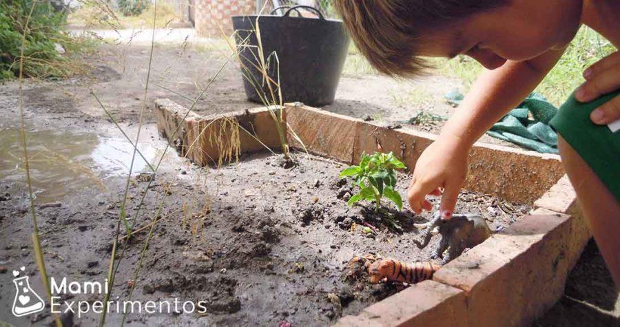 Poniendo plantas para los animales