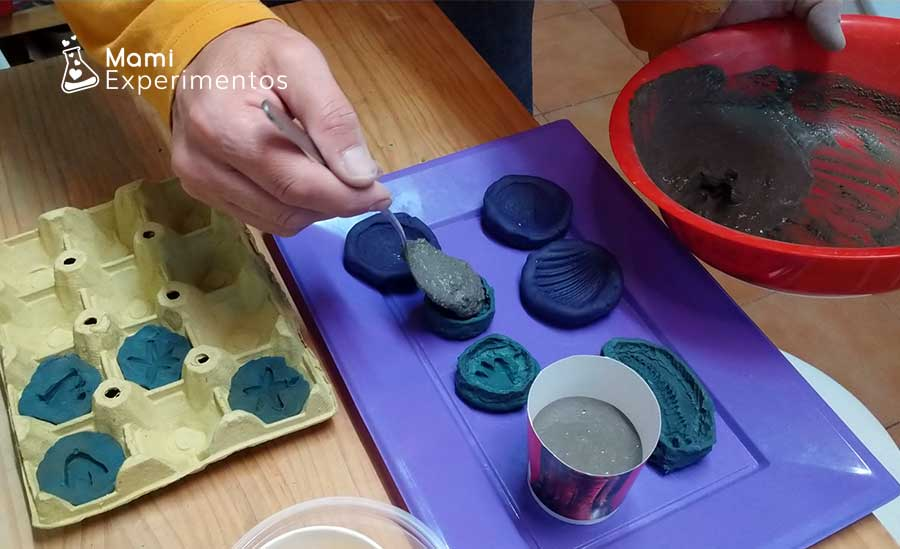Llenando moldes de plástico para crear fósiles caseros