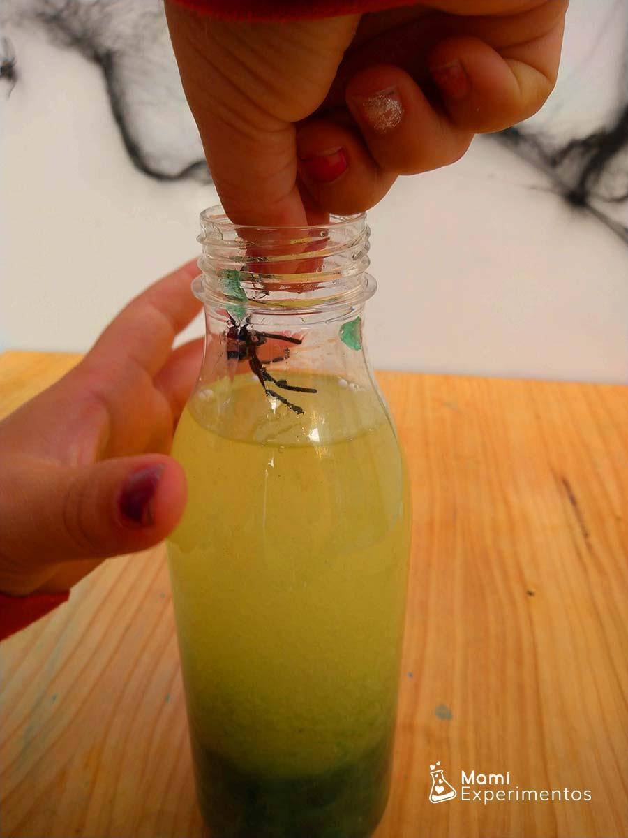 Metiendo arañas en botella sensorial Halloween
