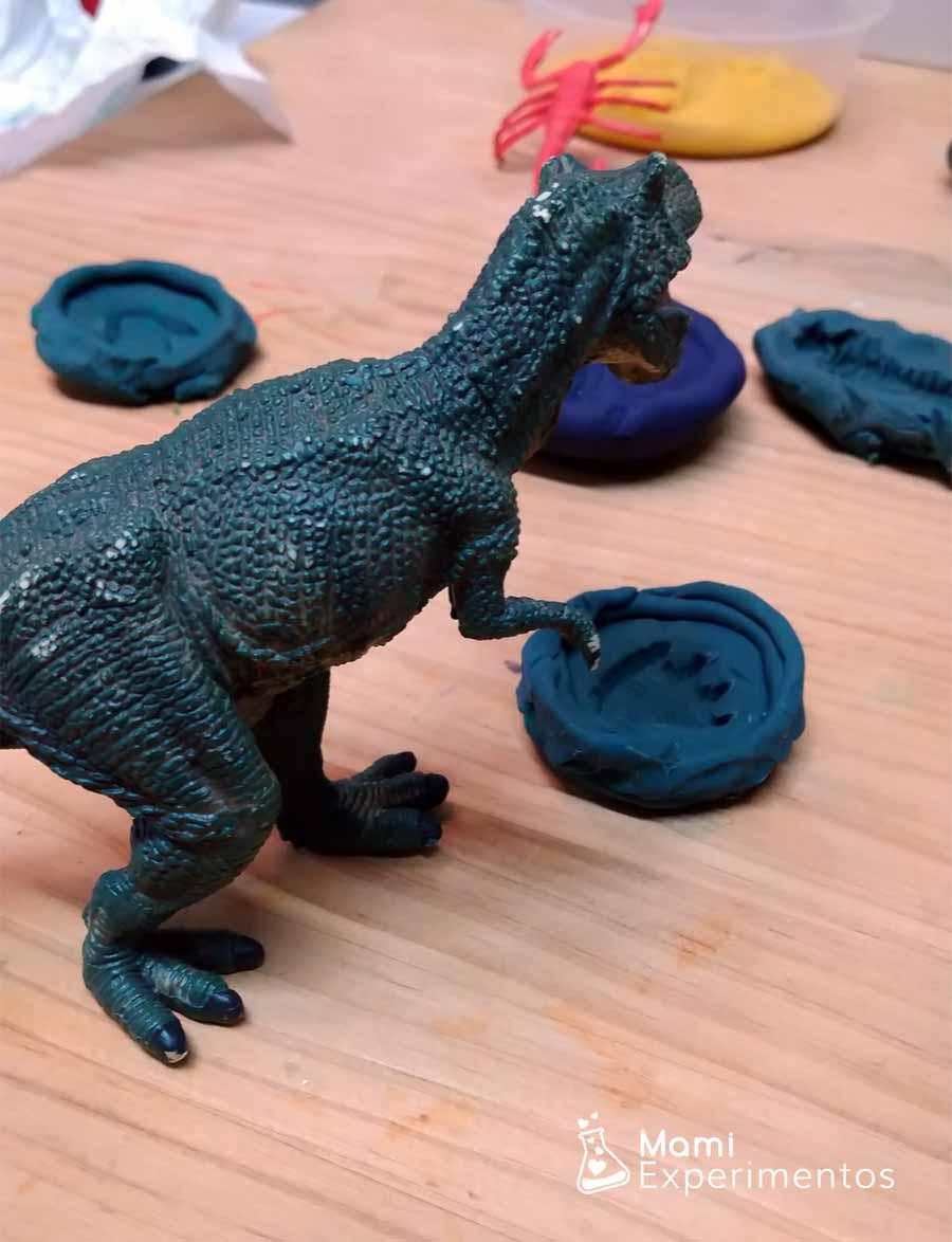 Fósil de huella de dinosaurio casera