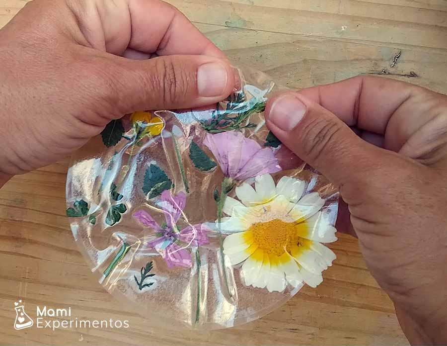 Montando atrapasol de flores con papel adhesivo transparente y flores reales