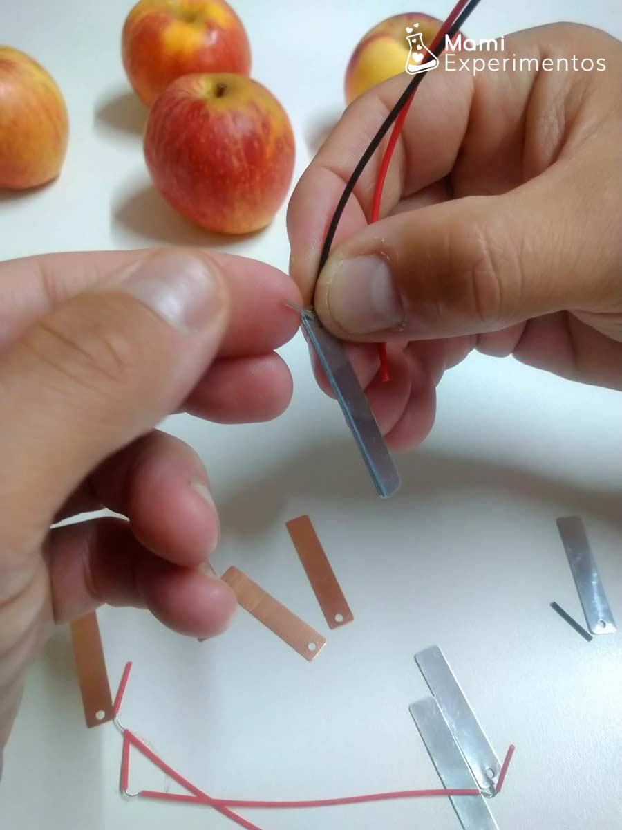 Montando cables y placas para circuito eléctrico con manzanas