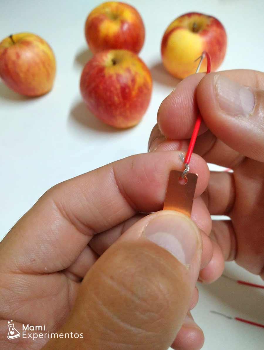 Placa de cobre en manzanas para circuito eléctrico