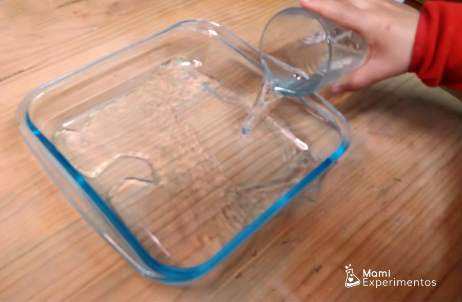 Preparando recipiente con agua experimento papel de cocina