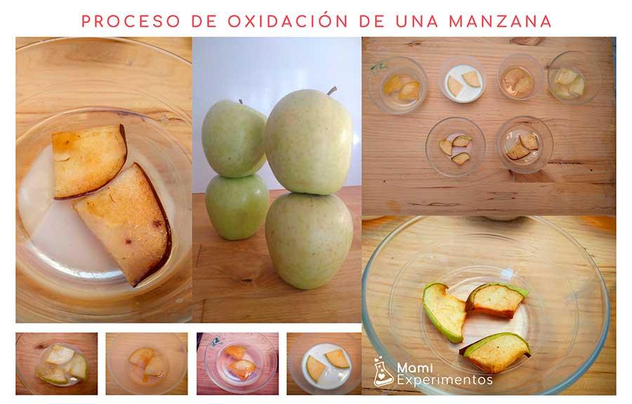 Proceso de oxidación de una manzana