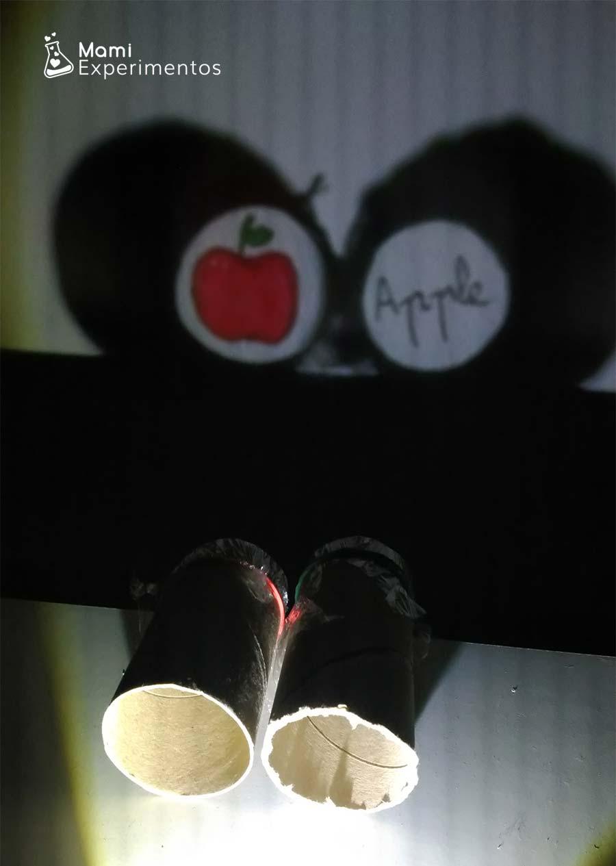 Proyector casero con rollos para aprender frutas en inglés