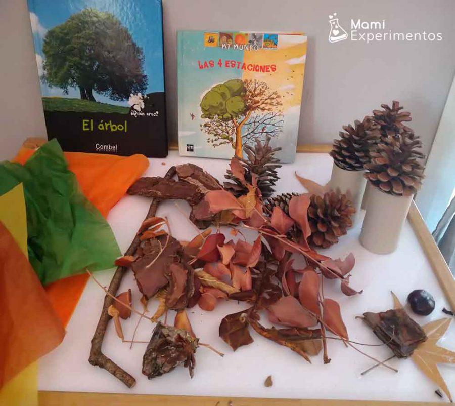 Materiales necesarios para nuestra caja sensorial de otoño