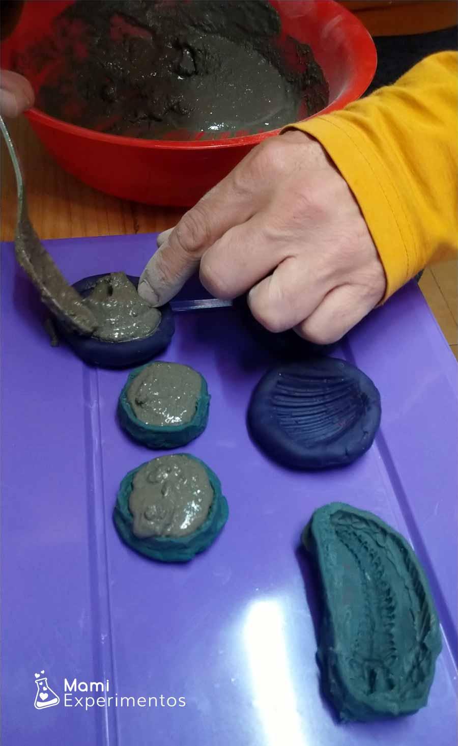 Rellenando moldes de plastilina con cemento para hacer fósiles