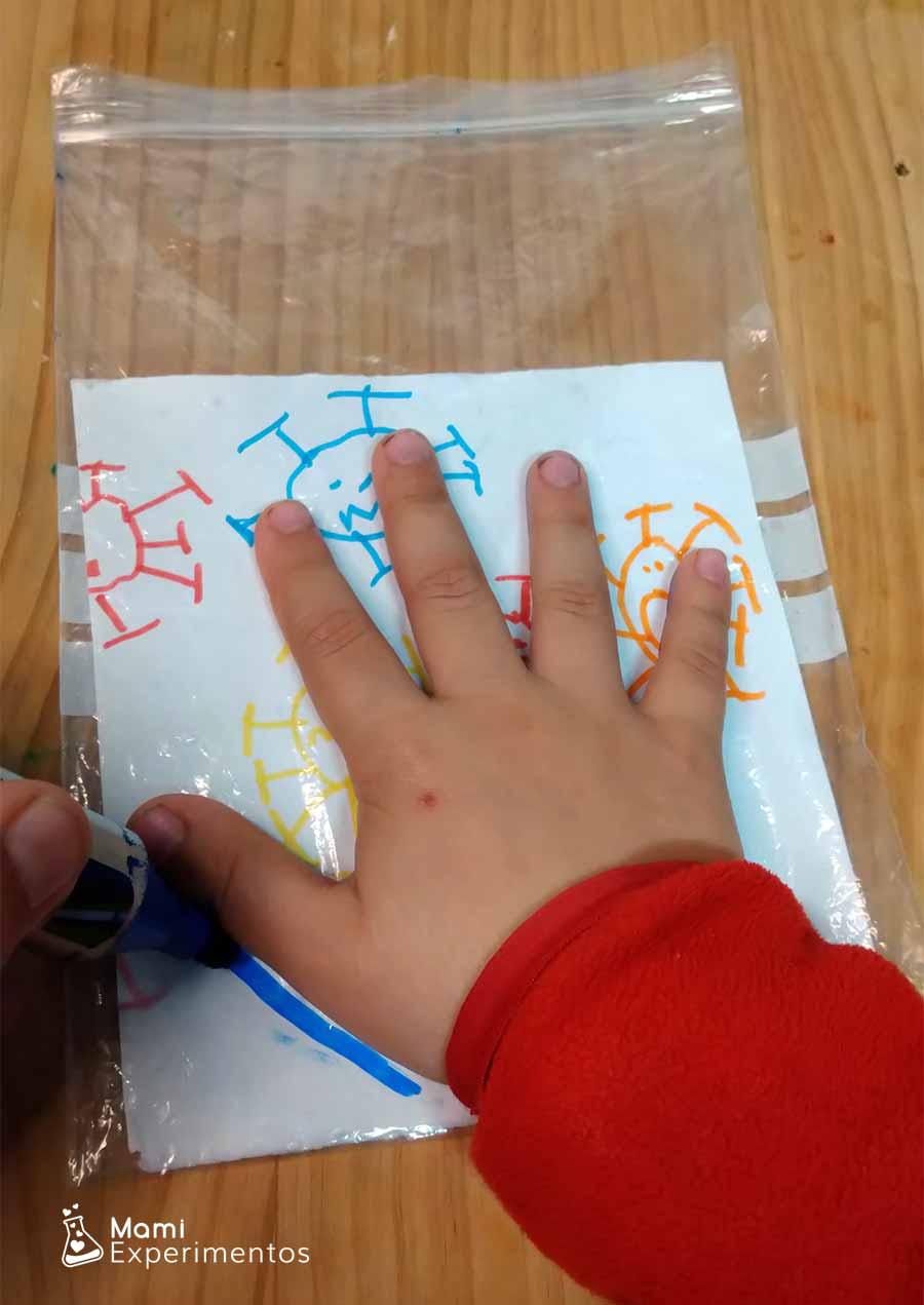 Repasando mano con permanente en bolsa zip para experimento virus que desaparecen