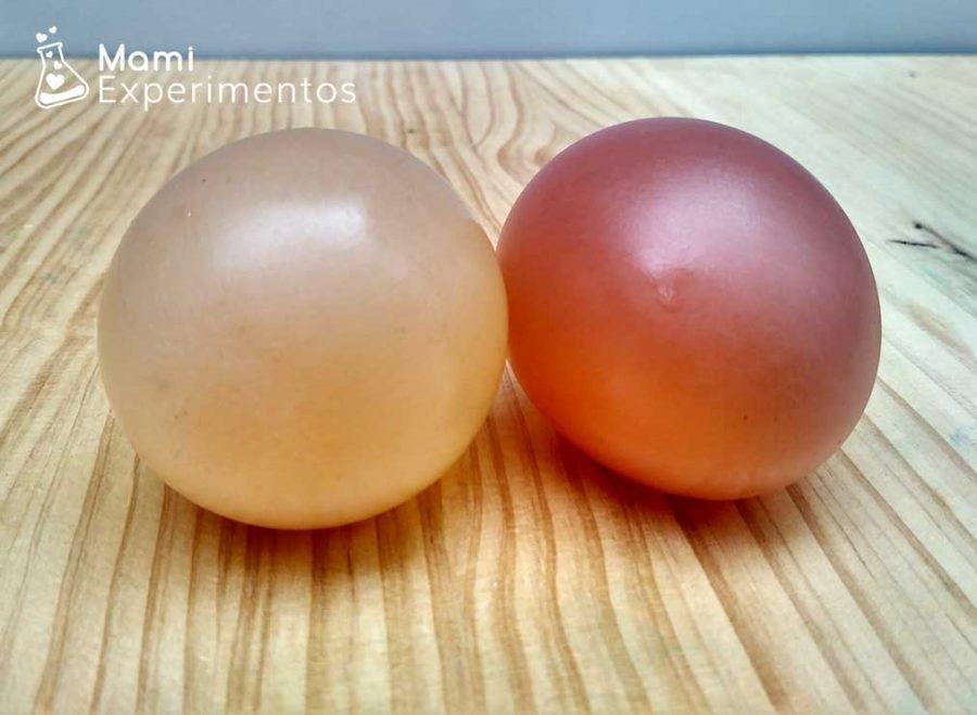 Resultado final del huevo que rebota