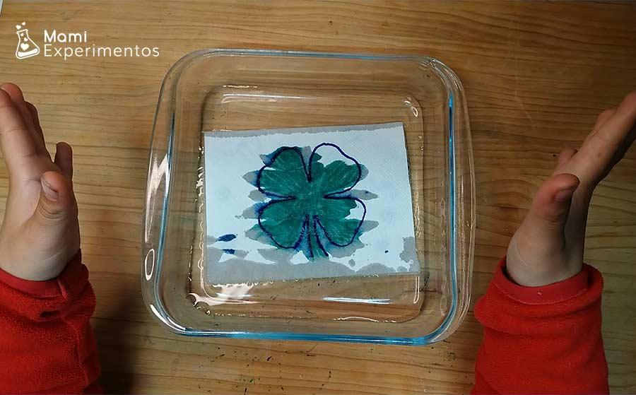Sumergir papel de cocina dibujado en agua y sale magia colorida