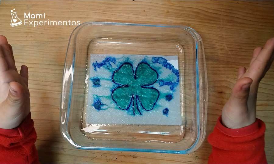 Trébol que aparece pintado en contacto con el agua