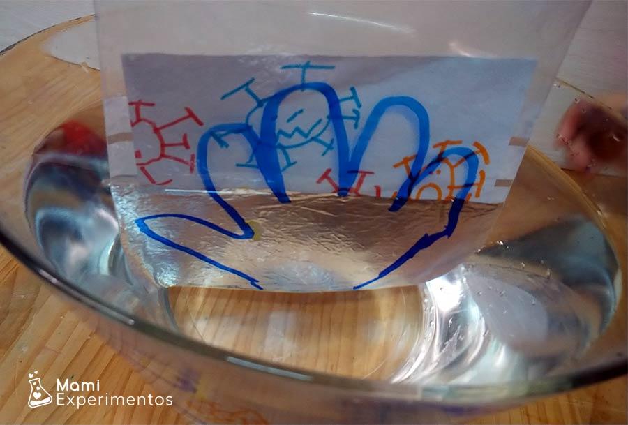 Virus que desaparecen dentro del bol de agua